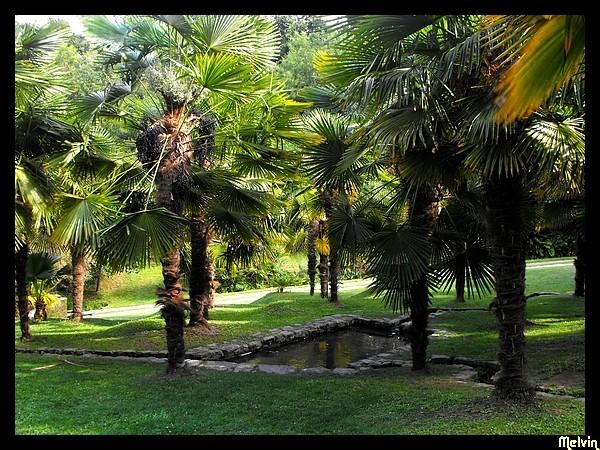 Visites dans les Parcs et Jardins Dscf5320
