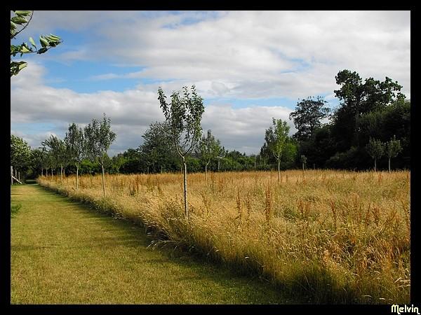 Visites dans les Parcs et Jardins Dscf5411