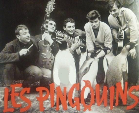 les pingouins 123a10