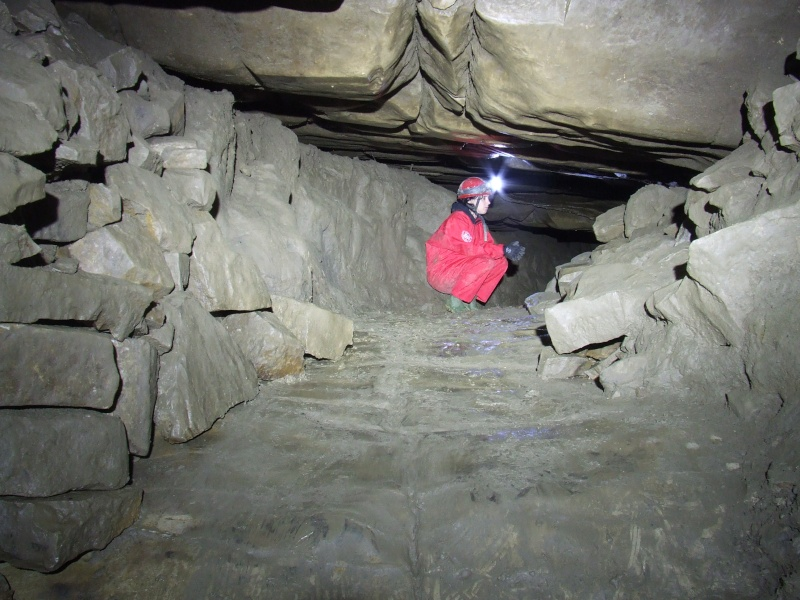 Ogof Hen Ffynnonau (Poachers Cave) Dscf1010