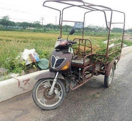 Những sáng tạo 'độc nhất thiên hạ' của người Việt C1ed7010