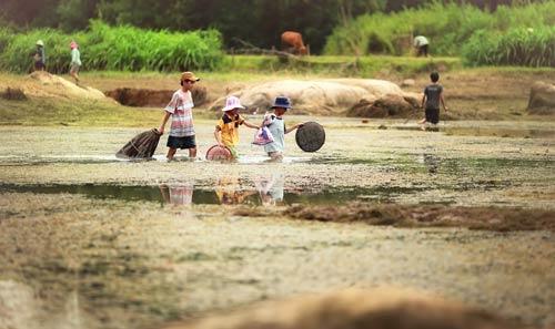 Sông nước Việt Nam Nguoid12
