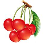 Tính cách theo loại trái cây bạn thích Thumb_11