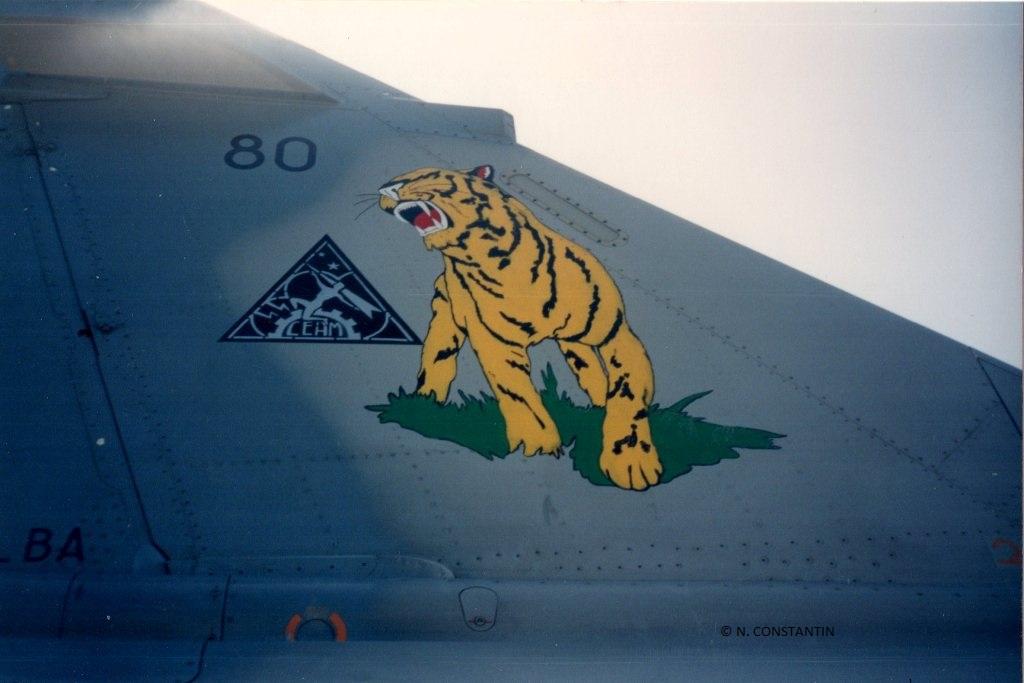Dassault Mirage 2000C [ITALERI / ESCI 1/48] Img18010