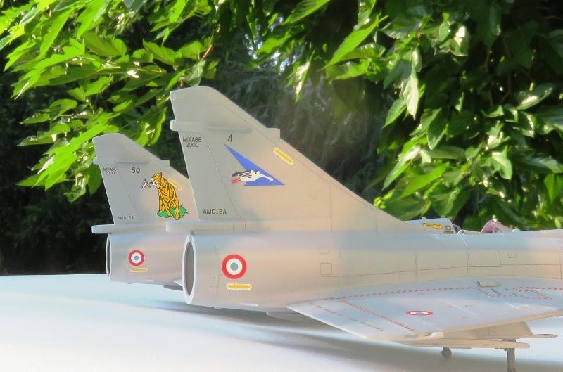 Dassault Mirage 2000C [ITALERI / ESCI 1/48] Img_8521
