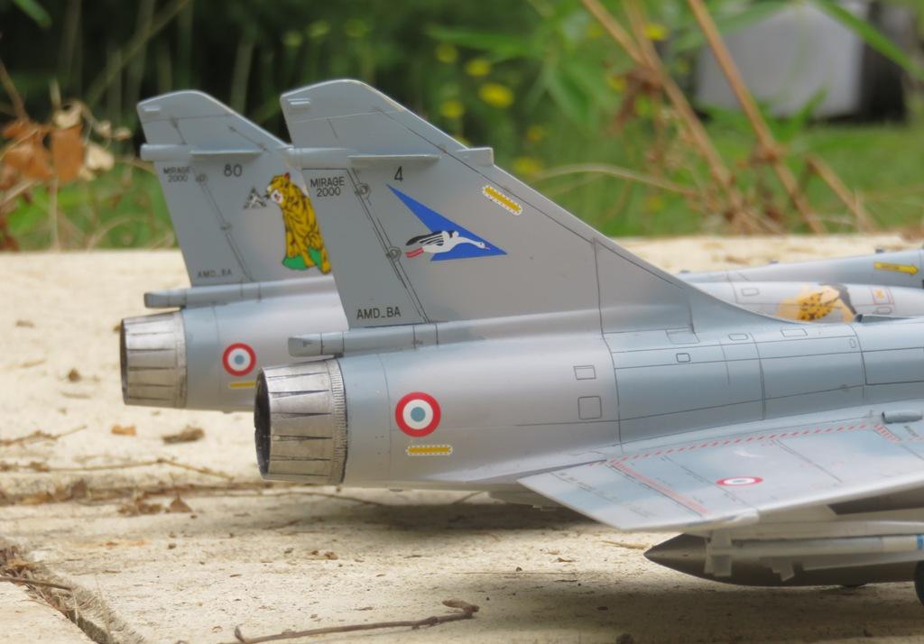 Dassault Mirage 2000C [ITALERI / ESCI 1/48] Img_8610