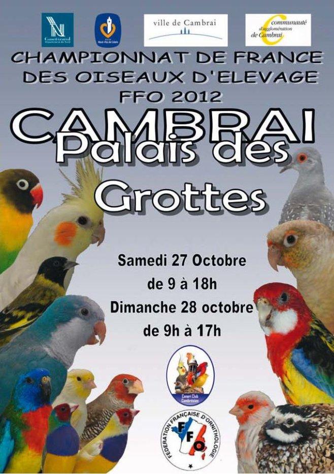 National FFO 2012 à Cambrai 31110710