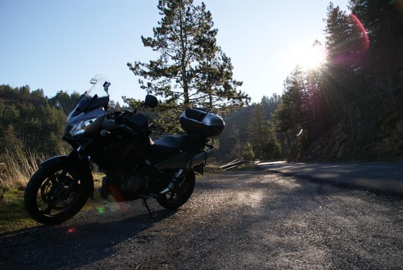 route du Causse de Sauveterre le 16 janvier 2011 Dsc01117