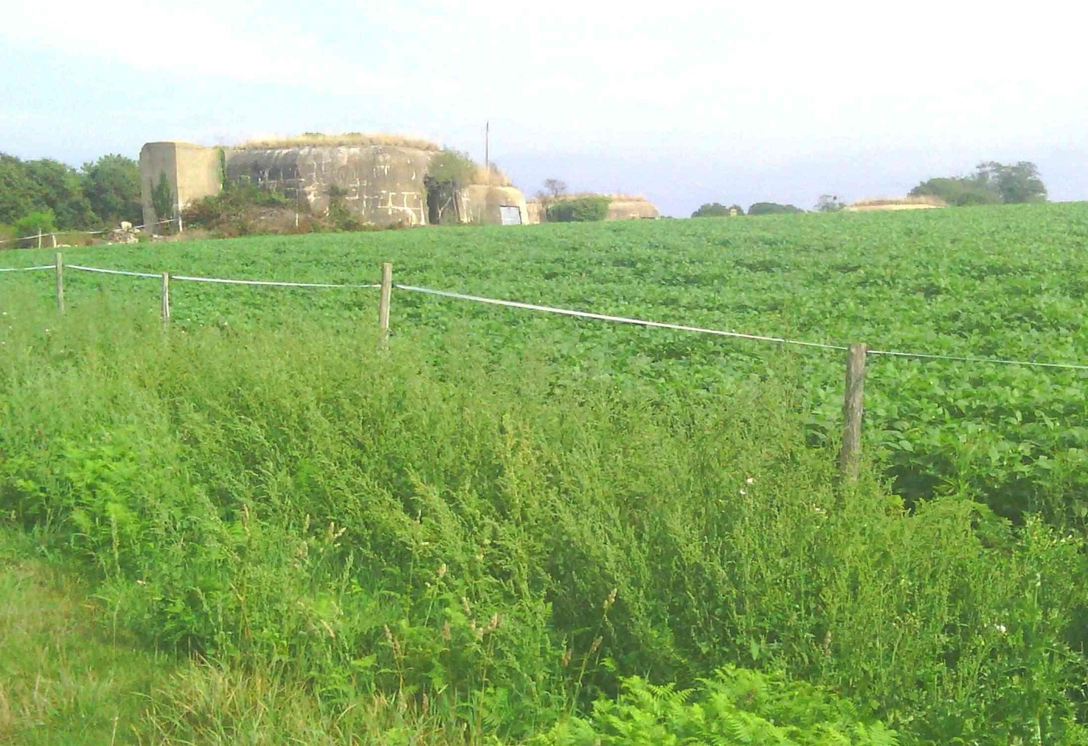 [ Histoires et histoire ] Fortifications et ouvrages du mur de l'Atlantique - Page 2 Bloc10