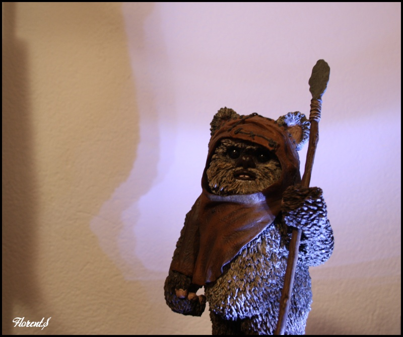 collection n°311: Darth Han Wicket10