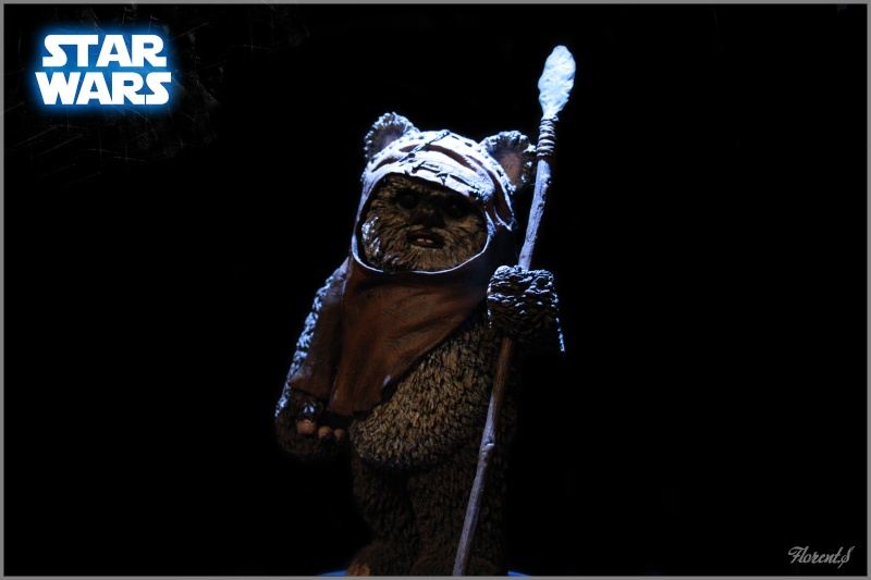 collection n°311: Darth Han Wicket11