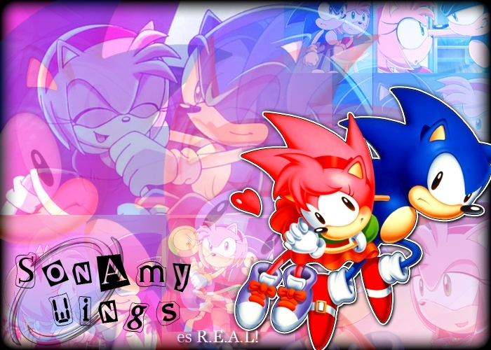 ~† SonAmy Wings †~