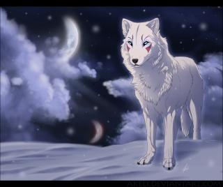 Profilul membrilor Snow_w10