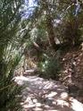 L'agadir d'AMTOUDI (ID AISSA) et la source de l'oued. Pict0312
