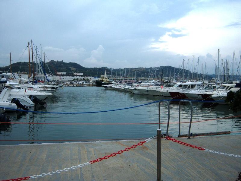Le Port de San Benedetto Del Tronto 100_2013