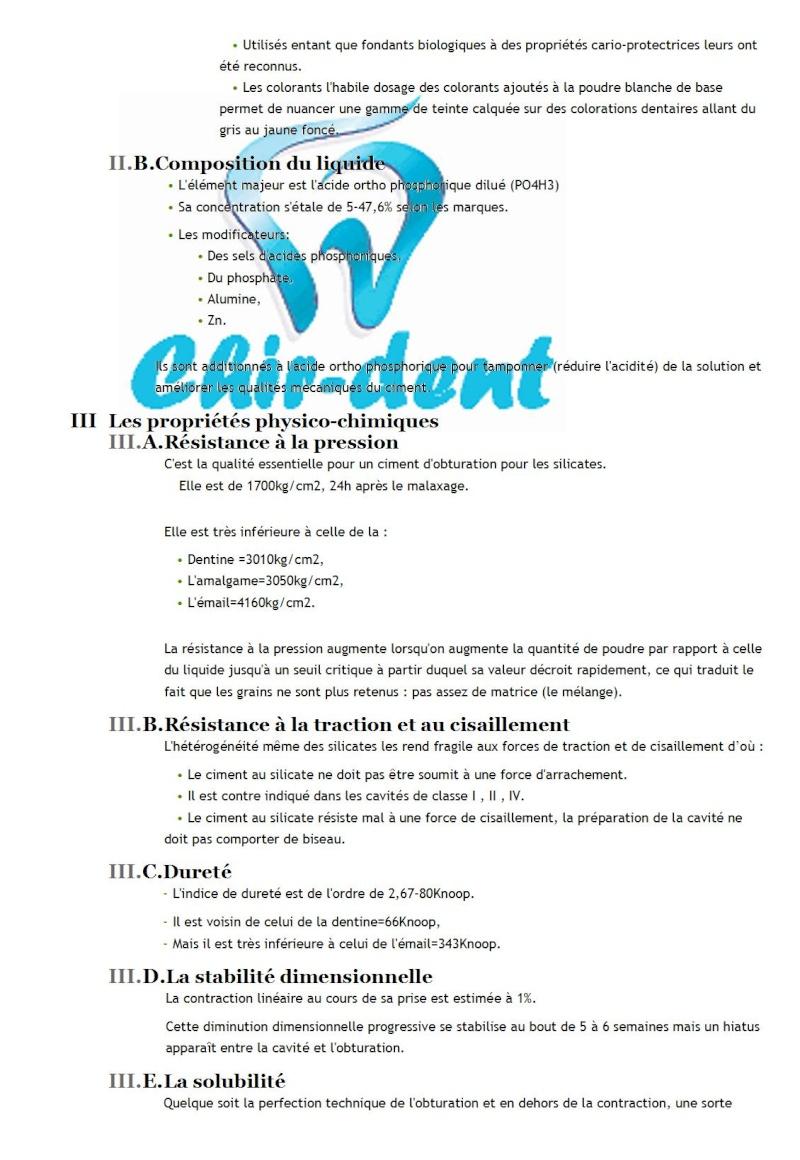 5 - Les silicates Les_si11