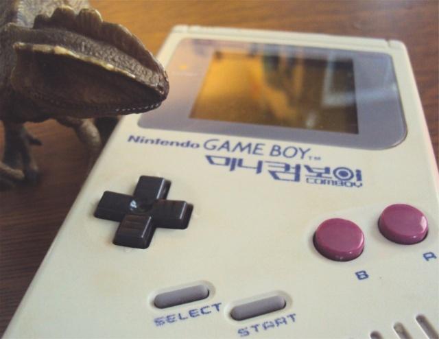 Ma p'tite collec Game Boy / Nintendo / SNK / ARCADE.. [MAJ mai 2013] - Page 2 Dsc02911