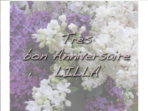 LILLA Lilla13