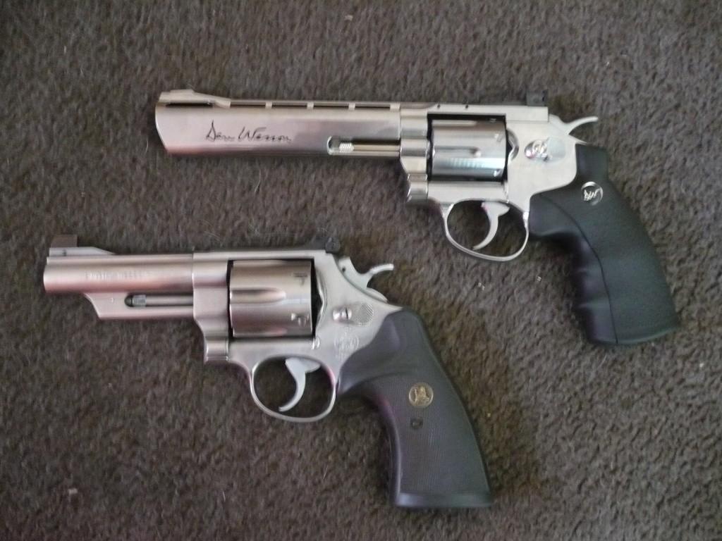 "Comparatif Dan Wesson 6"" vs .44 MAGNUM 4"" P1020533"