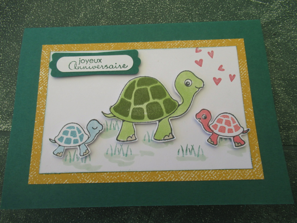 Quelques cartes avec nos amies tortues Img_8911