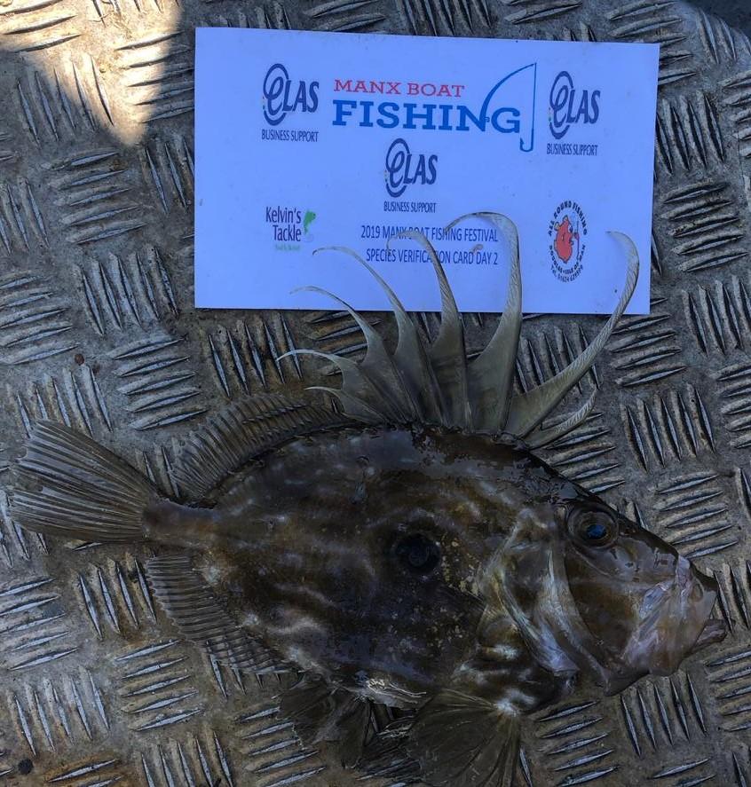 2019 ELAS BUSINESS SUPPORT SPONSORED FISHING FESTIVAL REPORT   Img-2013