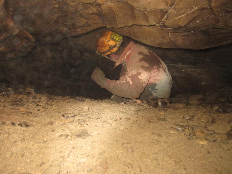 Afon Meirchion Cave (Lower) Img_2041