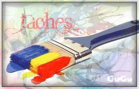 * Ipiscus VS Gogo. [Amical] Taches10