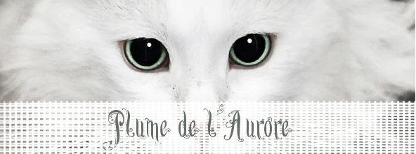 Cours d'Aurore & Soleil [Gimp] - Page 2 Plume_10