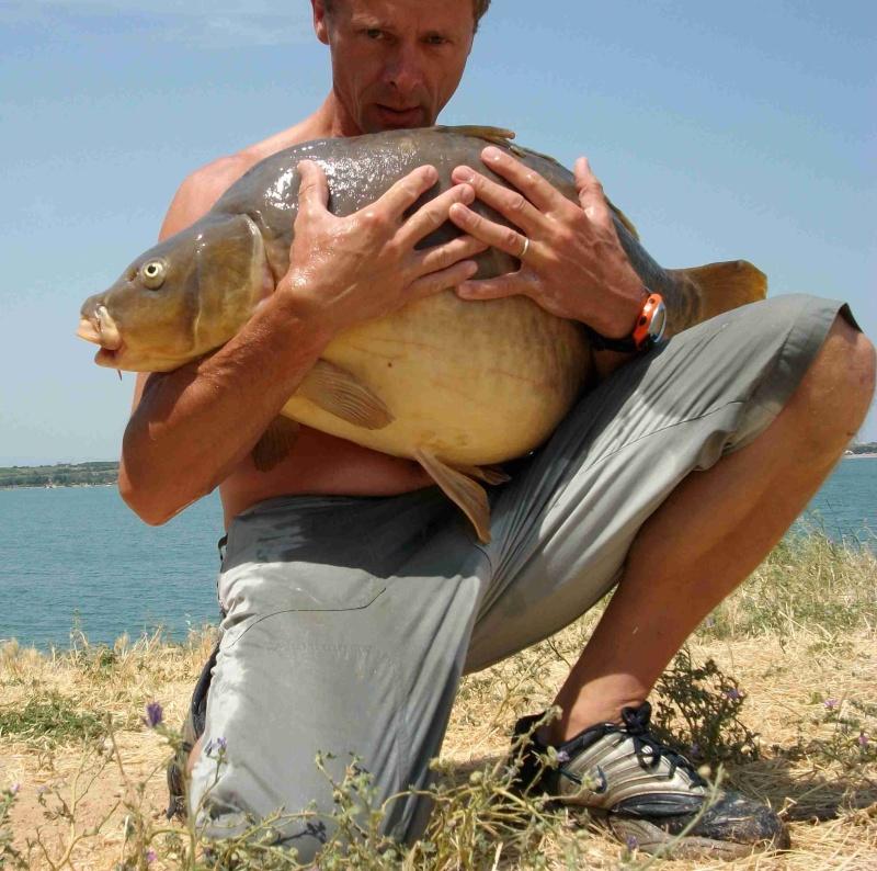 Quelques journées de pêche à Villeneuve de la Raho Carpe_19