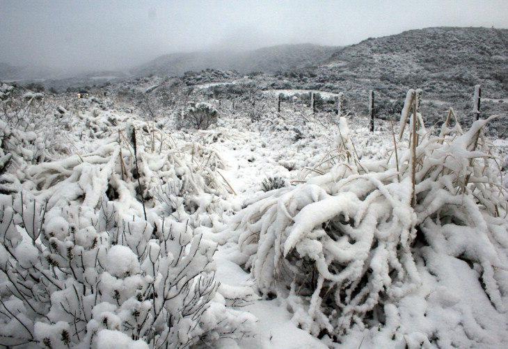 Il Sud America nella morsa del gelo Uru110