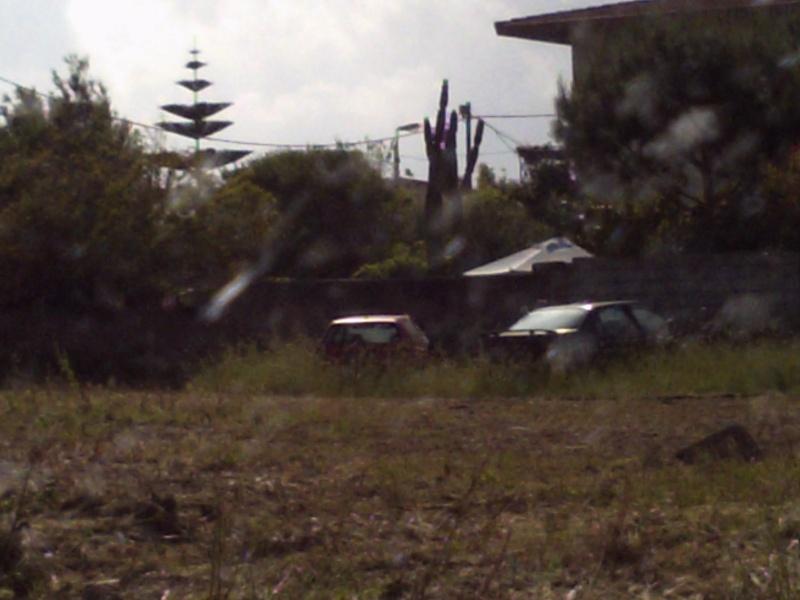 Auto Abbandonate Pict0091