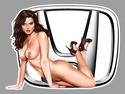 PIN UP SEXY AUTO Hb01310
