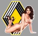PIN UP SEXY AUTO Ra18210