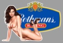 PIN UP SPONSORTS SEXY Ra18710