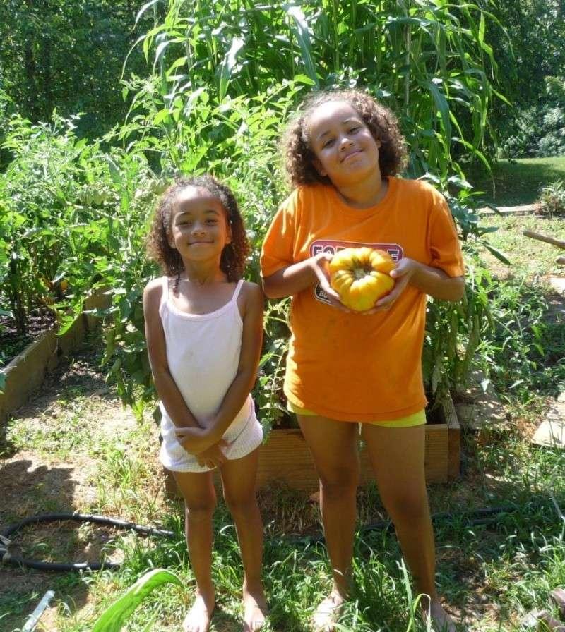 My bragging tomatoes -(Boffer, beware) 01512