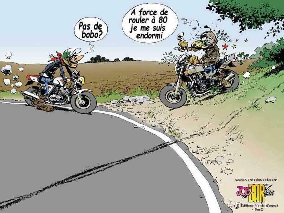 Image du jour  - Page 39 36969610