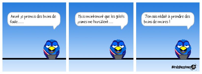 Image du jour  - Page 16 Gavera16