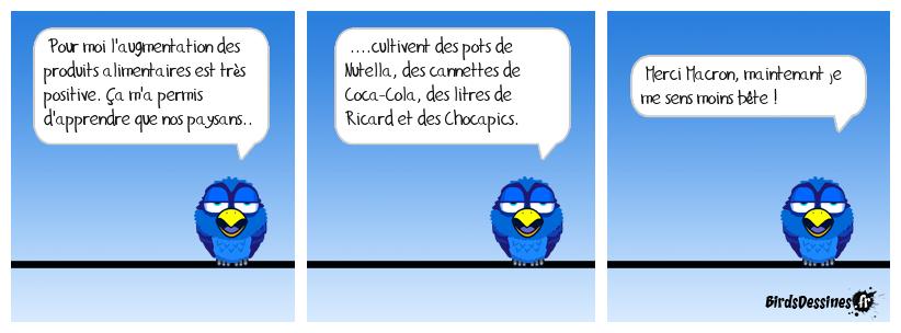 Image du jour  - Page 18 Gavera18