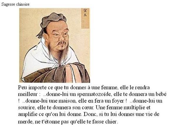 Image du jour  - Page 7 Mime-a10