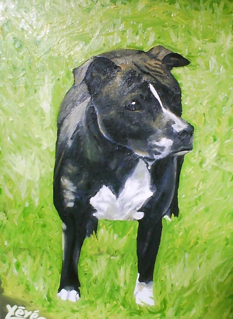 Peintre animalier Athana10