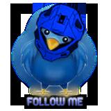 Twitbird Recon Rectwi10