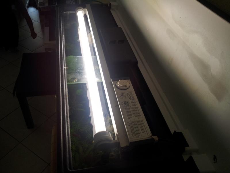 Bac 120L 20120913