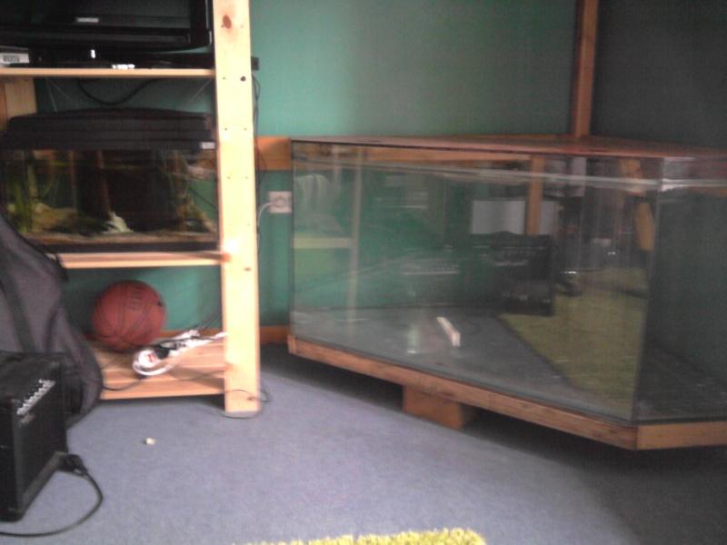 Terrarium d'angle en verre. Photo011
