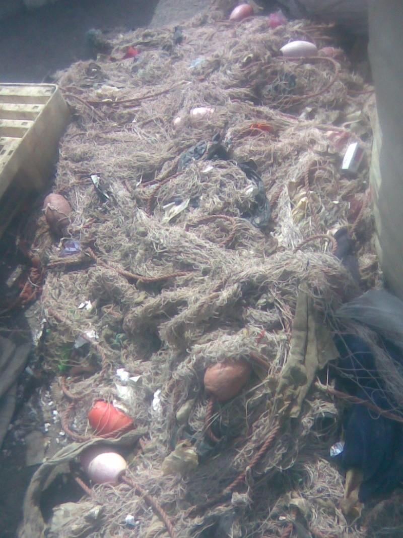 L'océan n'est pas une poubelle 2010_012