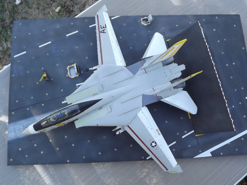 montage F-14 A Academy et hasegawa - Page 2 F-14_810