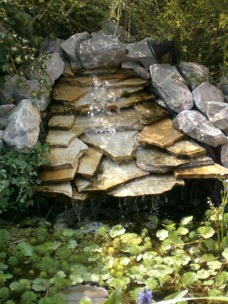 petit étang a côté du chalet... Hpim1215