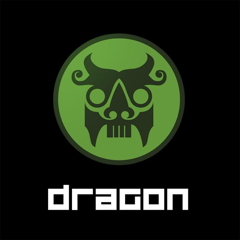 Intro | Stryder Dragon10