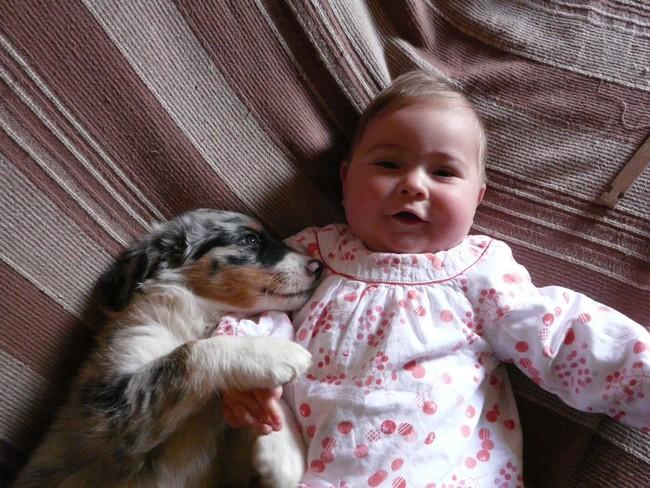 Notre petit Canada et le nouveau bébé de la famille!!! P1050011
