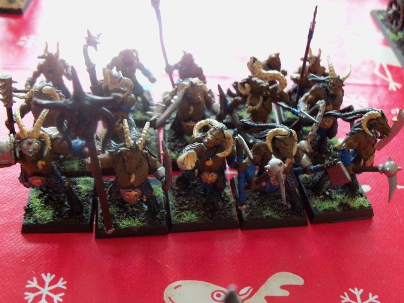 vente Homme-bêtes et Chaos battle 100_0713