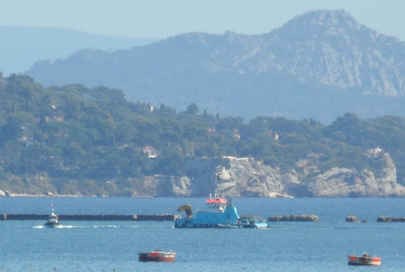[LES PORTS MILITAIRES DE MÉTROPOLE] Mouvements de Bâtiments dans la rade de Toulon - Page 2 Sam_0015